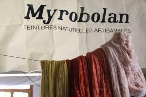 Myrobolan8