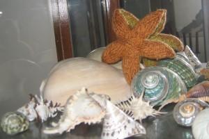 SeaStar1